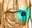 Shiitake v boji proti rakovině jater