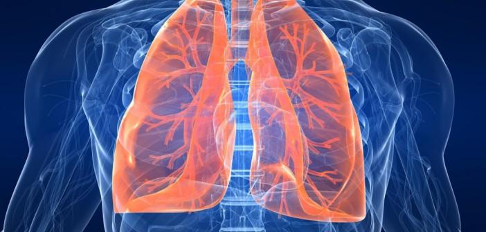 Chaga a rakovina plic