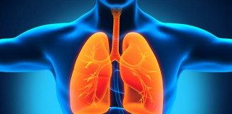 Polyporus a rakovina plic